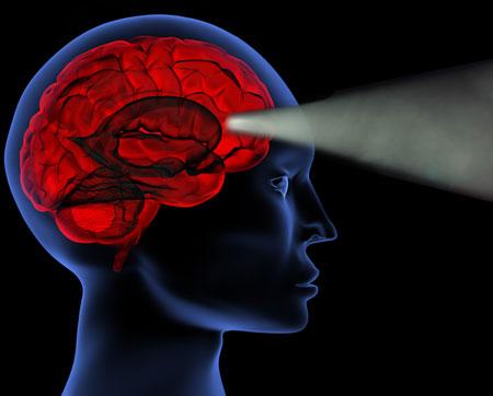 brainbeam1