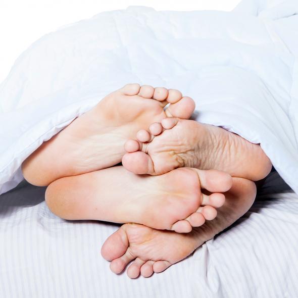 The-Leg-Huggers