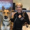 couple_adopts_blind_german_shepherd_featured