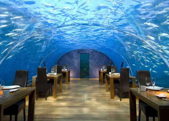 maldives-underwater-restaurant
